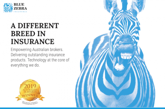 Blue Zebra Insurance Adopts The Xceedance Mga Agility Suite Insurance Innovation Reporter