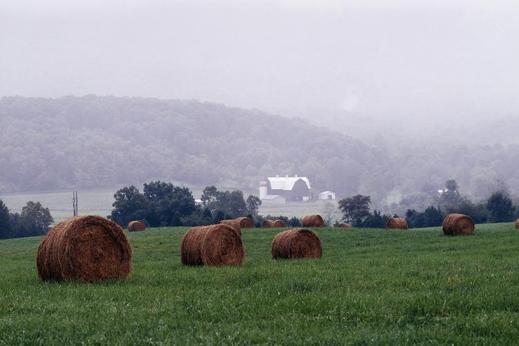 Virginia Farm Bureau Selects One Inc Digital Payments ...
